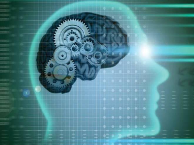 Use su cerebro con inteligencia (parte 1)