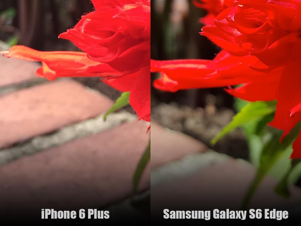 s6-vs-iplus-color