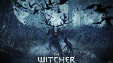 gameplay de the witcher 3