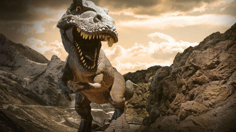 Hallan En Colombia Partes Del Meteorito Que Mato A Los Dinosaurios Enter Co Tanto, que a medida que la tecnología y los medios permiten en cierto modo hace pocos meses hablábamos de que finalmente se aceptaba la hipótesis del meteorito, porque aunque era la conclusión más extendida (y. meteorito que mato a los dinosaurios