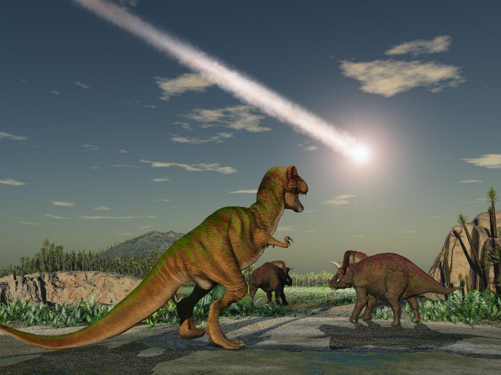 Por Fin Comenzaran Estudios En El Famoso Crater Chicxulub De Yucatan Enter Co Geólogos hallan evidencias fósiles en un río en texas que indican que la tierra se enfrió bruscamente tras el impacto del asteroide. enter co