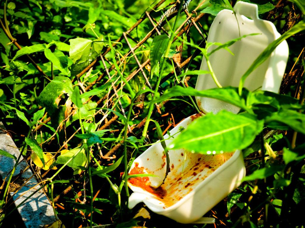 El icopor afecta al medio ambiente y por eso se debería controlar su uso.