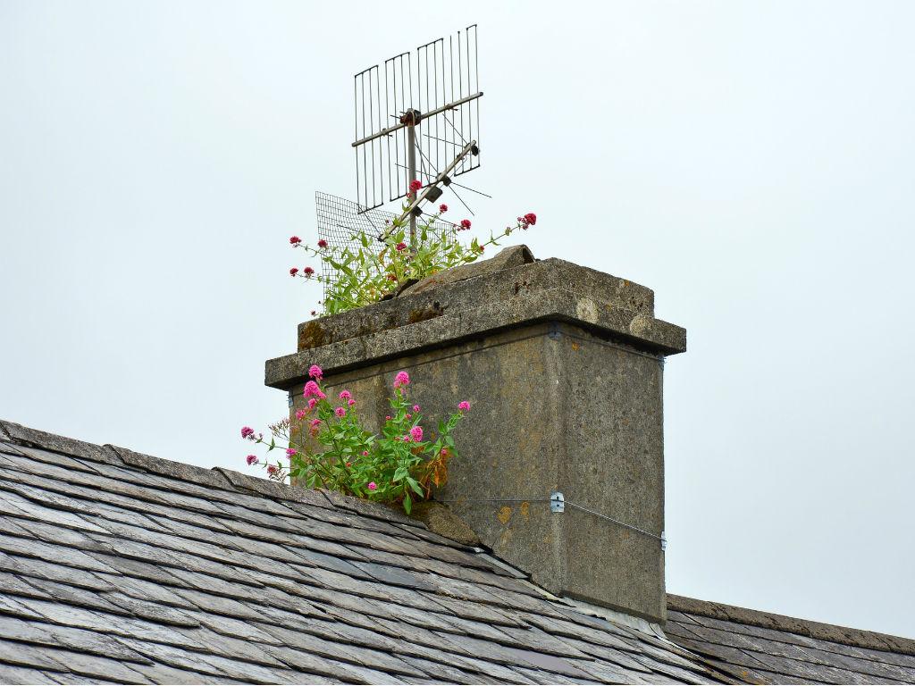 chimney-1480688_1920FINAL