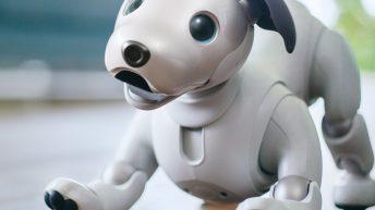 Aibo perro robot Sony
