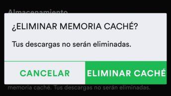 Spotify Cache