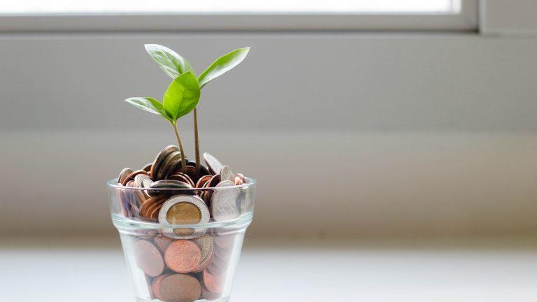 Una planta creciendo en un vaso de monedas. Financiación