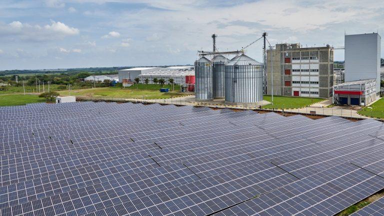Colombina y CEO presentan su planta de autogeneración de energía solar