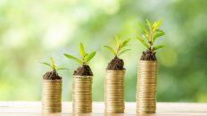 capital semilla, inversion, emprendimiento, startups